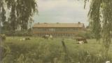 100 jaar De Hutten 10